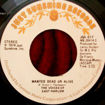 Voices Of East Harlem - Wanted Dead Or Alive