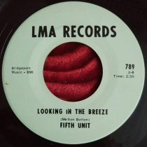 Fifth Unit – Looking In The Breeze
