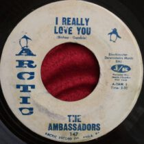 The Ambassadors – I Really Love You