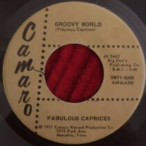 Fabulous Caprices – Groovy World / My Love