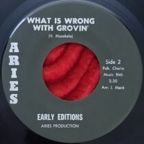 Early Editions – What Is Wrong With Grovin'