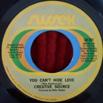 Creative Source - You Can't Hide Love