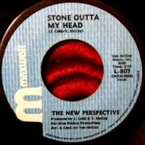 New Perspective ‎- Stone Outta My Head